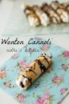 Wonton Cannoli