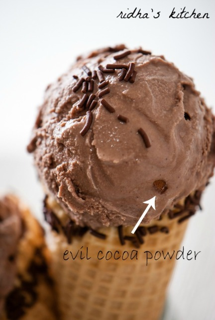 Spiced Chocolate Ice Cream Recipes — Dishmaps