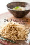 Home made noodle